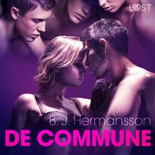 B. J. Hermansson De commune - erotisch verhaal