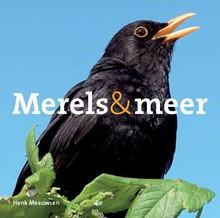 Henk Meeuwsen Merels & meer