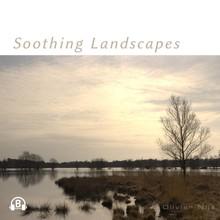 Olivier Nijs Soothing Landscapes - Rustgevende Landschappen