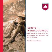 Maarten van Rossem Eerste Wereldoorlog - Een hoorcollege over het ontstaan, het verloop en de gevolgen