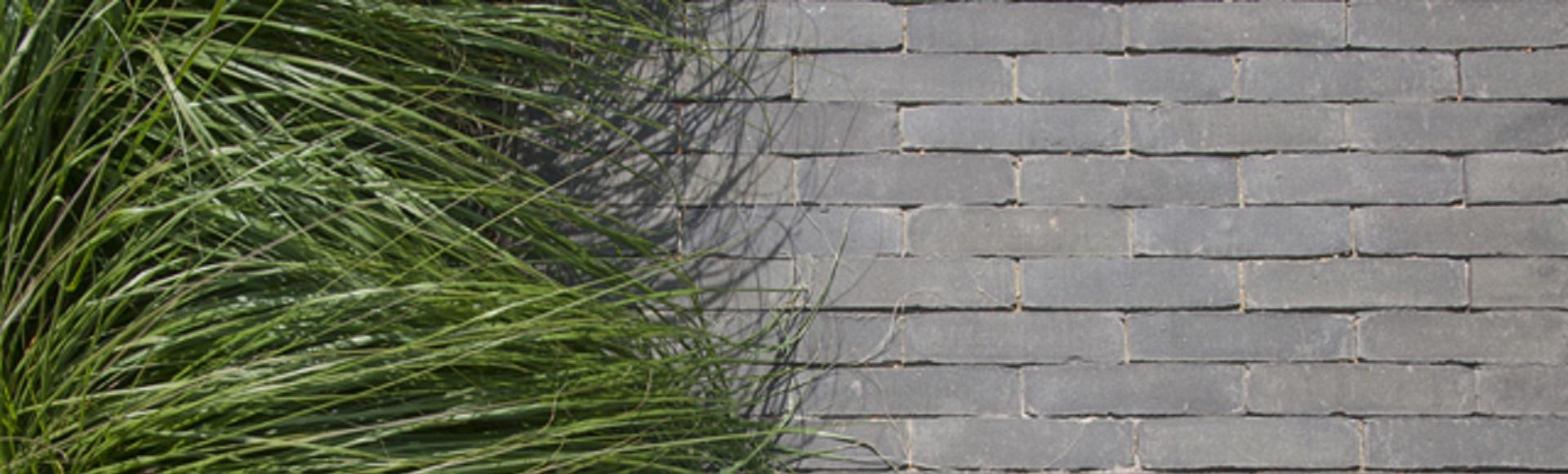 voorbeeld vande moortel septima titaan