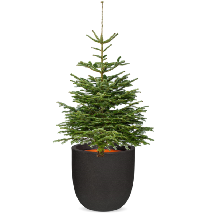 POT URBAN SMOOTH • EGG PLANTER div kleuren Ø35/34cm ♥ -50%