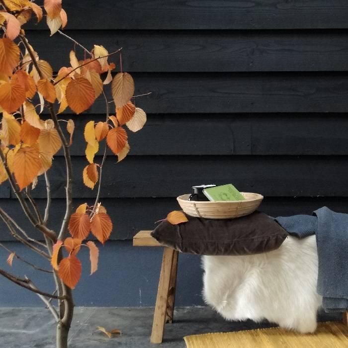 buiten leven • in de herfst