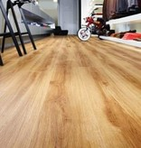Moduleo 24438 Classic Oak Moduleo Transform Dry Back PVC Vloer