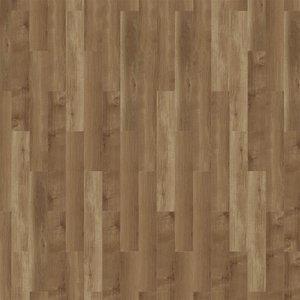 MFlor 41813 Dark Sycamore Broad Leaf MFLOR Dryback PVC