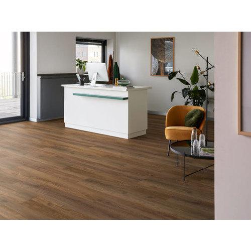 MFlor 56316 Liguria Authentic Oak XL MFLOR Dryback PVC