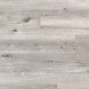 Tasba Floors 62001920 Belgisch Eiken Lichtgrijs Laminaat