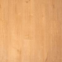 04736 Kletskop Praktisch Dry Back PVC
