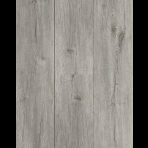 Tasba Floors TS61 Wood XL SPC Dry Back PVC
