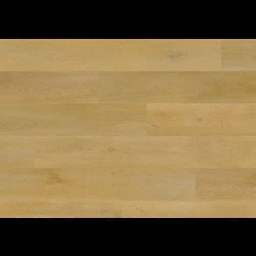 Aspecta 76539X Onega Elemental Dry Back XL PVC