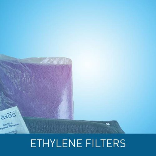 Ethylene filters