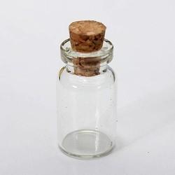 JS Lege Glazen Flesjes met Kurk 50 Stuks