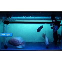 JS LED Aquariumlamp