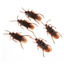Supply Nep Kakkerlakken 10 Stuks