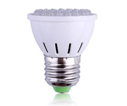 LED Lamp 2 Watt
