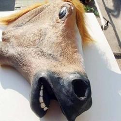 JS Paardenhoofd Masker van Latex