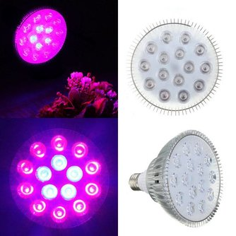 Kweek LED Lamp Geeft Paars Licht
