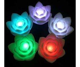 Nachtlampje Bloem Kleurrijk