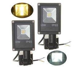 Bewegingssensor LED In Twee Kleuren Licht