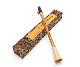 Blaasinstrumenten Klarinet