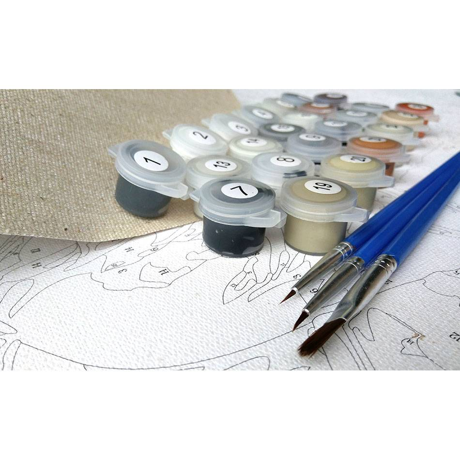 CHENISTORY Frameloze Chrysant DIY Schilderen Nummers Moderne Muur Canvas Handgeschilderde Olieverf Voor Home Decor 40x50