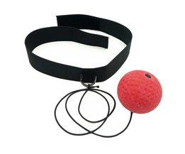 Speedball Reflex Boksen