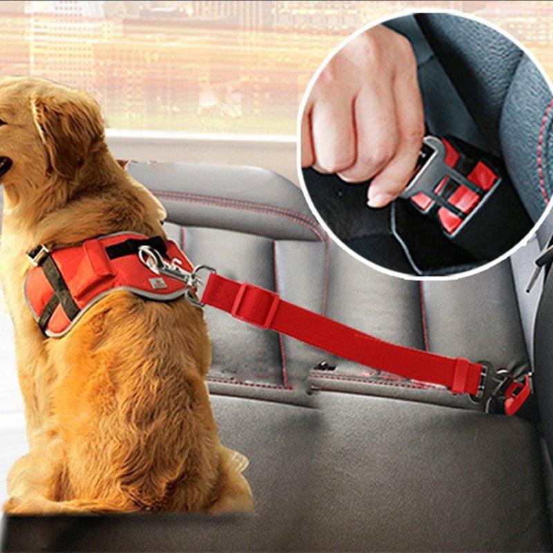 MyXL Autogordel voor Hond