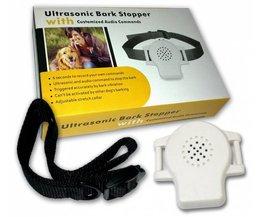 Anti Blafband Ultrasonic