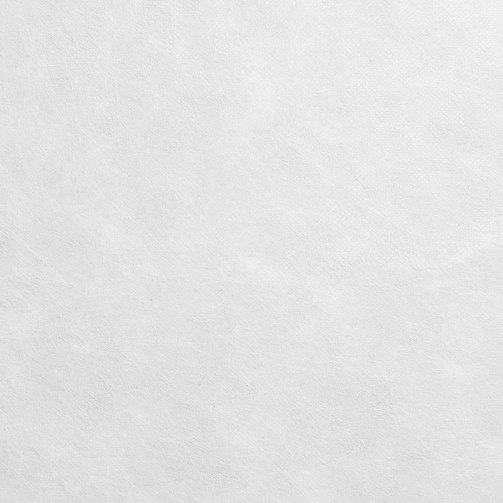 PP-Spinnvliesstoff 15 g/m², Weiß, Breite 80 cm, 500 m
