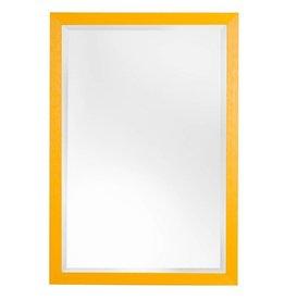 Roses - sfeervolle betaalbare spiegel met gele kader