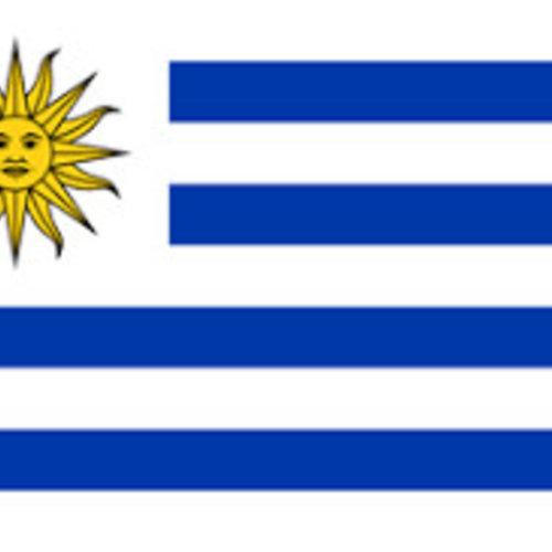 Uruguayaanse wijn