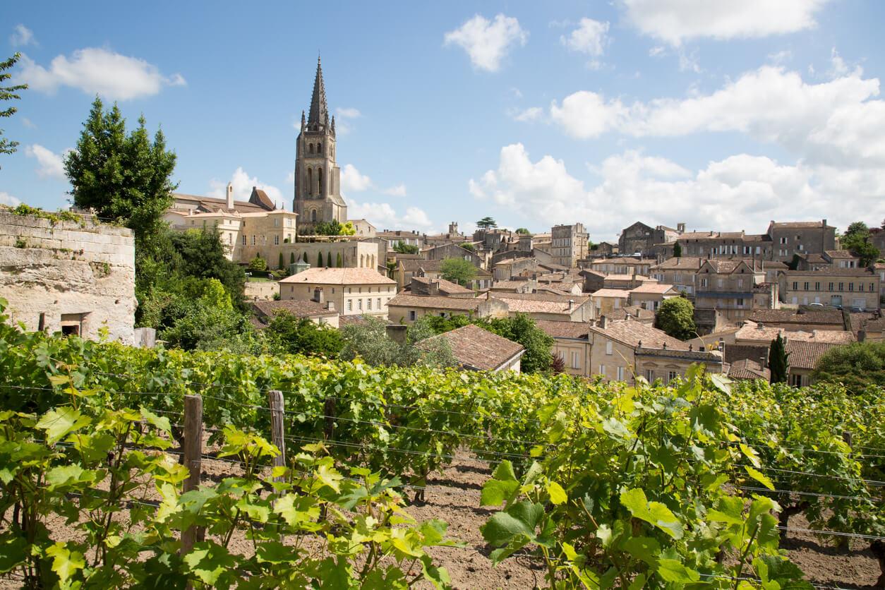 Bordeaux: de gids