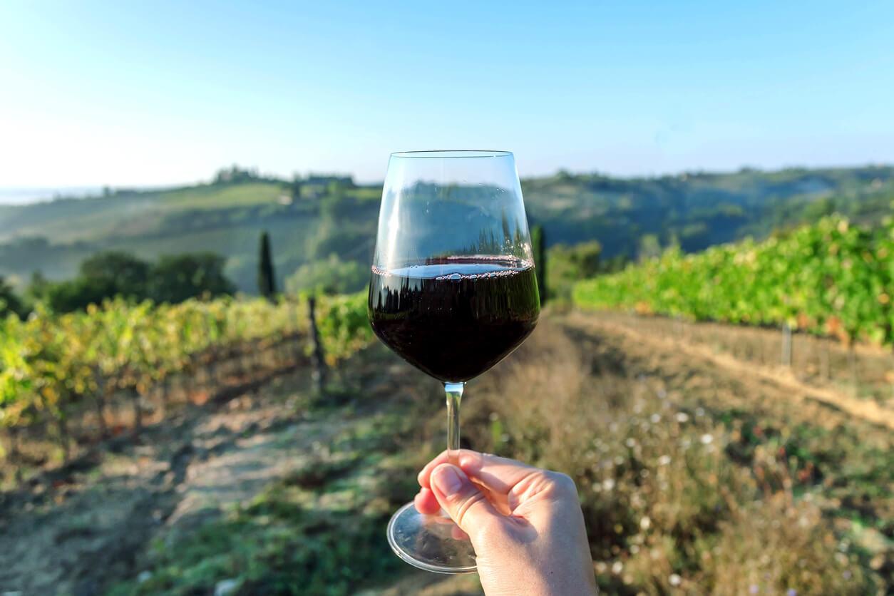Spaanse wijn: de gids