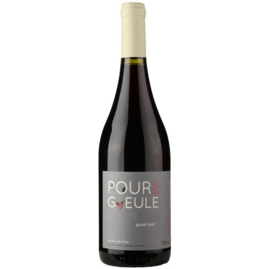 Clos des Fous, Pour Ma Gueule, Pinot Noir, Maipo Valley, Chili, Rode wijn