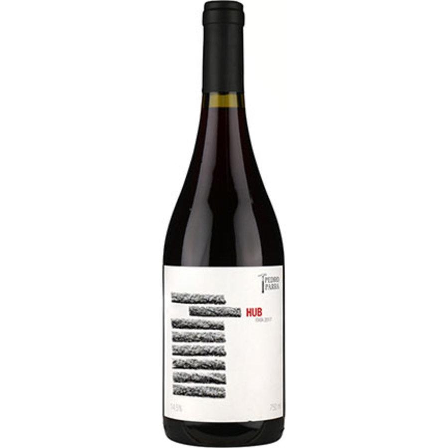 Pedro Y Parra Familia, Hub, Itata Valley, Chili, Rode wijn