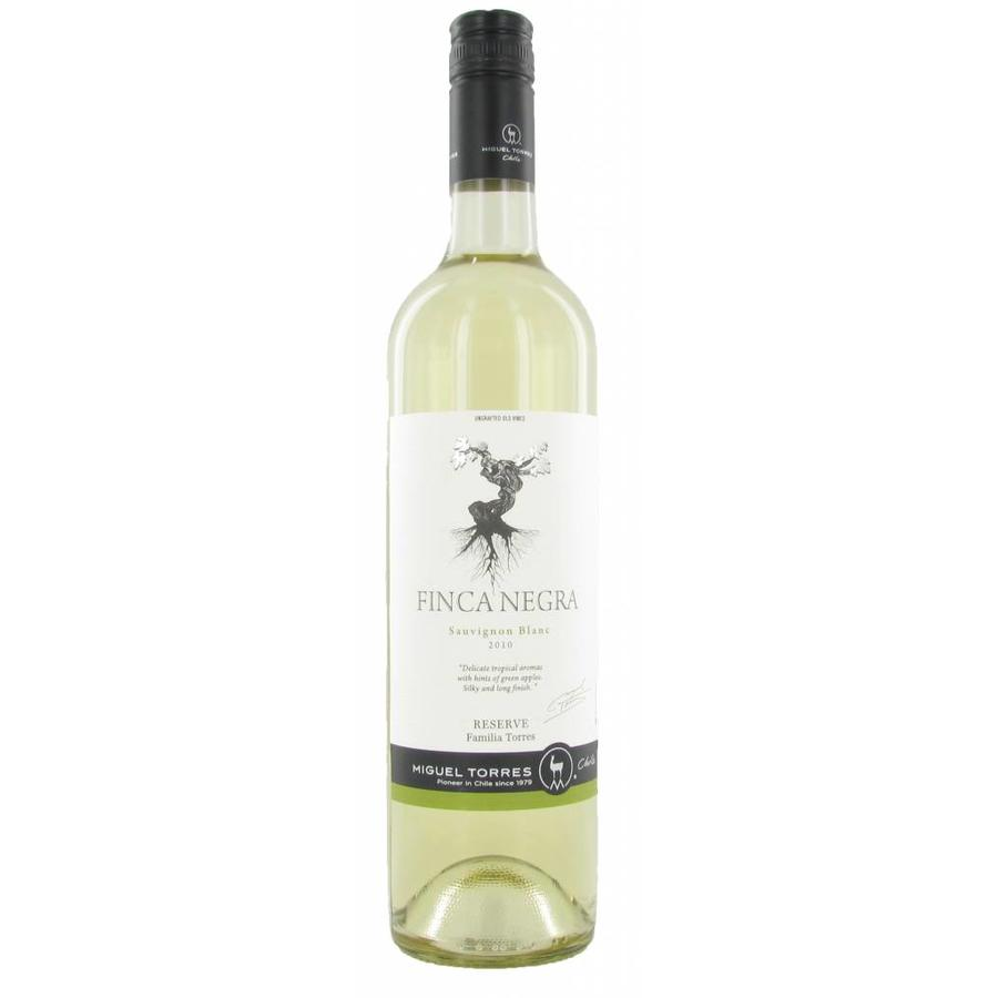 Torres, Finca Negra Sauvignon Blanc Res, 2018, Central Valley Region, Chili, Witte Wijn
