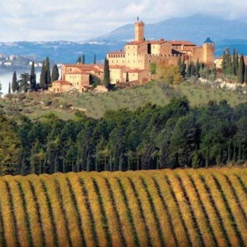 Montalcino wijn