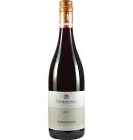 Weingut Blankenhorn VDP Spätburgunder Rotwein trocken 2016 VDP Gutswein
