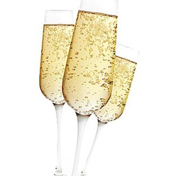 Champagne glazen (set van 2)