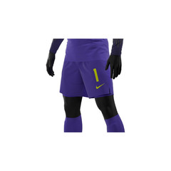 NIKE WORLD CUP 2018 PROMO SHORT COURT PURPLE