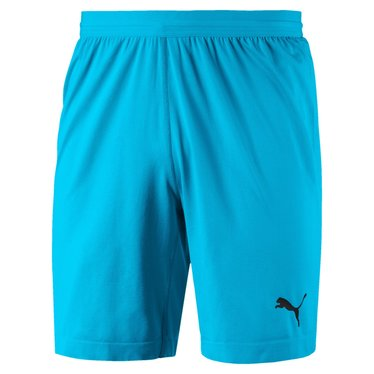 PUMA FINAL EVOKNIT GK SHORT AQUARIUS