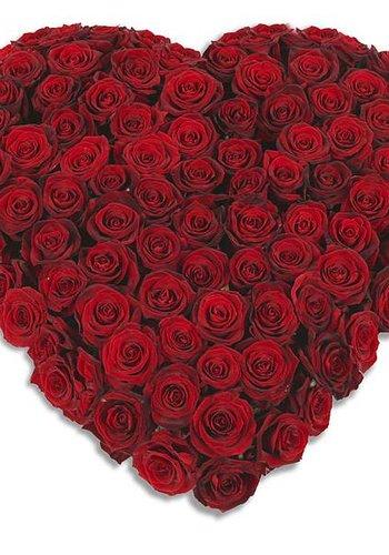 Abelia Meesterbinders Rood hart vorm rouwboeket
