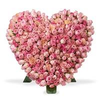 Roze rozen standaard hart