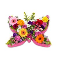 Kleurrijke vlinder vorm