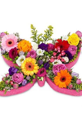 Abelia Meesterbinders Kleurrijke vlinder vorm