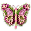 Abelia Meesterbinders Roze kleurige vlinder