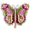 Roze kleurige vlinder