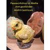 """André's workshops 3 -4 """"Paas workshop"""""""