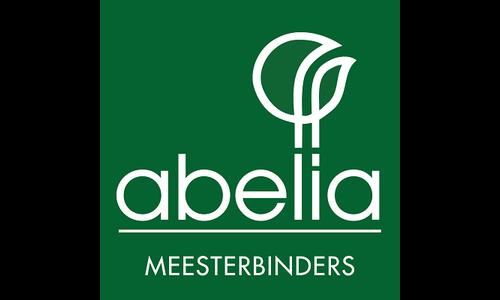 Abelia verhuur zijdebloemen
