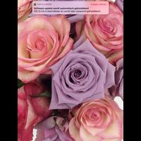 thumb-Rozen boeket roze zachte kleuren-2